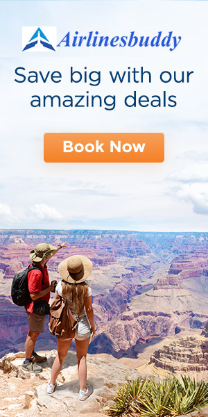 airlines reservation offers
